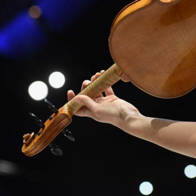 viulistin käsi