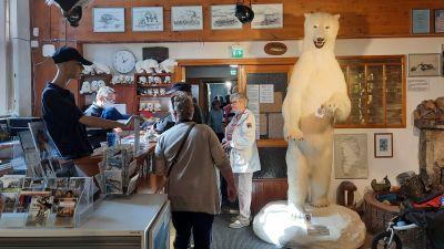 Uppstoppad isbjörn intill en receptionsdisk.