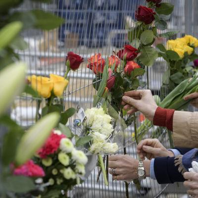Människor lägger blommor för att hera offren.