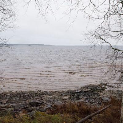Sateinen näkymä Oulujärven rannalta.