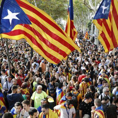 Demonstranter i Barcelona protesterar mot polisens handlingar för att förhindra Kataloniens folkomröstning.