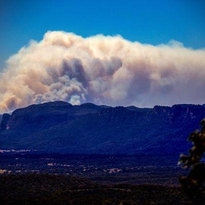 Den här bilden togs torsdagen den 7 november och visar rökmolnet över nationalparken Wollemi, nära Lithgow, ungefär 100 kilometer väster om Sydney.