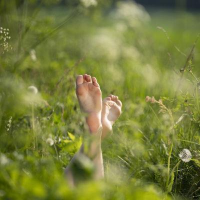 Paljaat jalat pystyssä kesäisellä niityllä.