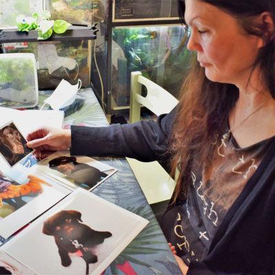Sanna Uusitorppa katselee kuvia labratorinnoutaja Hannusta.