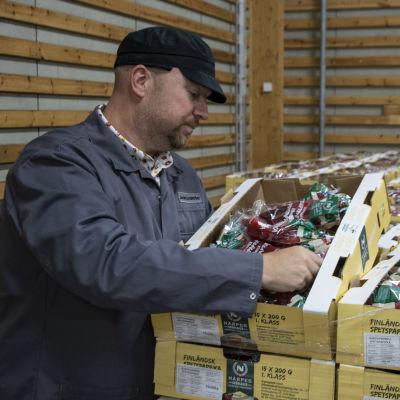 mies katselee pakattuja suippopaprikoita