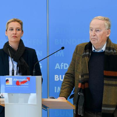 Alice Weidel och Alexander Gauland står bakom ett mikrofonpodium på en presskonferens.