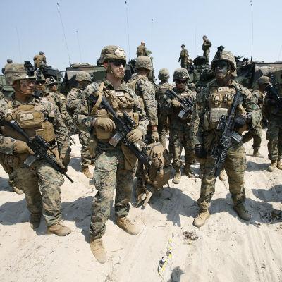 Amerikanska marinsoldater uppställda framför pansarfordon.
