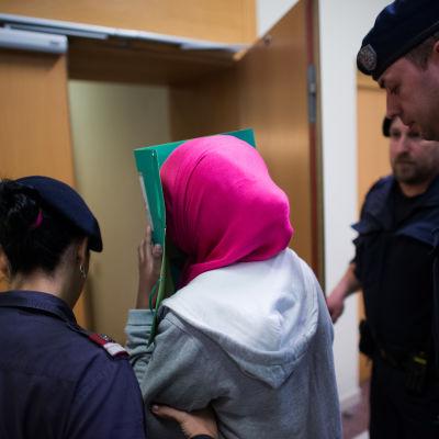 Svensk 17-åring dömd till fängelse i Wien den 18 februari 2015 för att ha planerat att ansluta sig till IS.