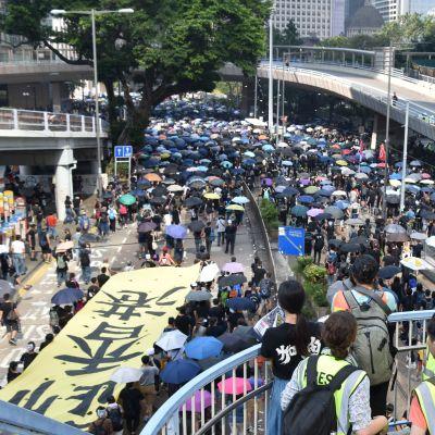 Människohav fotograferat uppifrån. Flera människor har färggranna paraplyer.