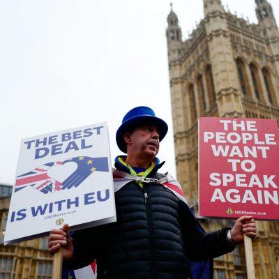 Brexit-demonstrant utanför Westminster.