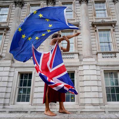 Brexitdemonstrant som viftar med flaggor.