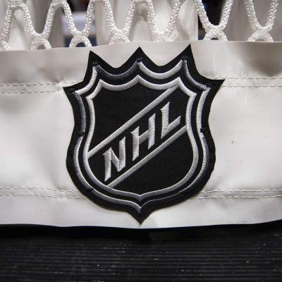 NHL-logo på en målbur.
