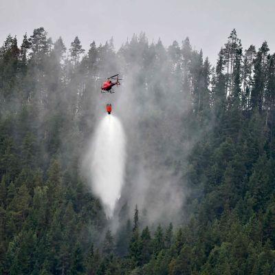 Helikopter släcker skogsbrand i Grötlingen i Bräcke kommun i Jämtland.