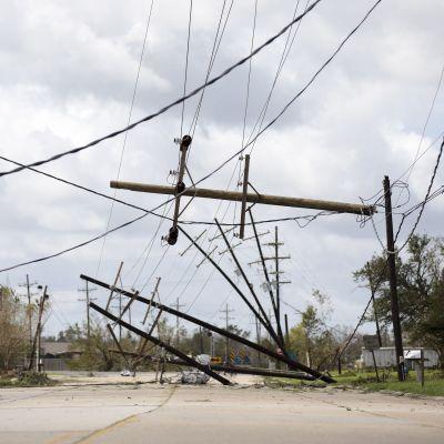 Elledningar och elstolpar ligger nere och hänger från träd efter stormen Ida.
