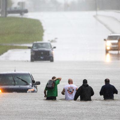 Folk vadar på översvämmad väg i North Carolina.