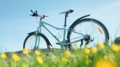 I förgrunden blommor, i bakgrunden en cykel.