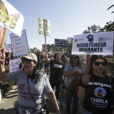 Demonstranter i USA kräver att landet fortsätter att skydda papperslösa som kommit till USA som unga.