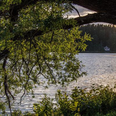 Aulangonjärvi Hämeenlinna