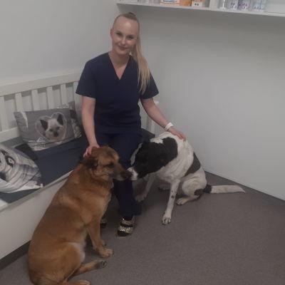 Eläinlääkäri Ina-Sofia Kohonen koirien kanssa.