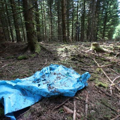 En blå presenning på marken i den skog där brottsplatsen ligger.
