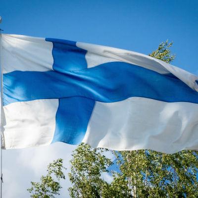 Suomen lippu tangossa