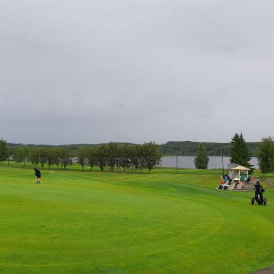 Laukaan Peurunkagolfin viheriö sateisena päivänä.