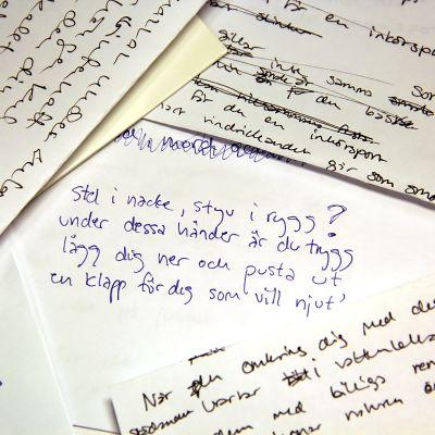 Rimpatrullens anteckningar.