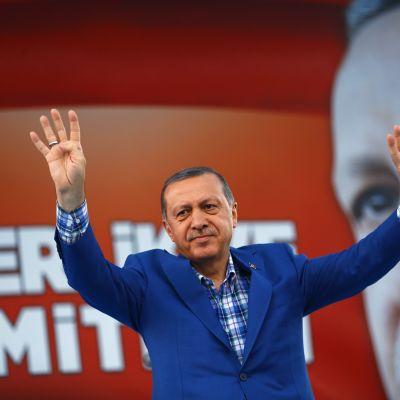 Erdogan katselee lempeästi.