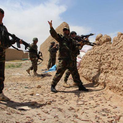 Afghanska soldater säker skydd bakom en mur under strider mot taliban-gerillan i Helmand-provinsen.