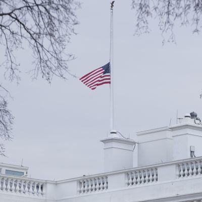 Den amerikanska flaggan hänger i halvstång för att sörja offren i skolskjutningen i Florida.