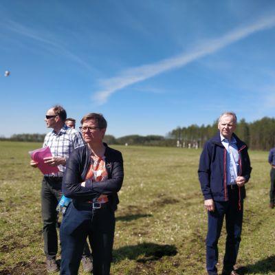 Krista Mikkonen Kiteellä tutustumassa valkoposkihanhien tekemiin tuhoihin,