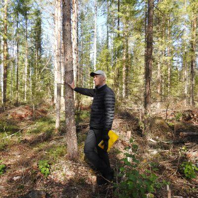 Mies nojaa puuhun metsässä