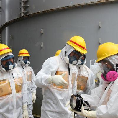 Strålning vid Fukushima