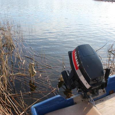 Yamaha båtmotor