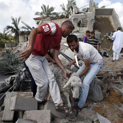Palestinska män flyttar undan get i spillrorna av ett hus efter en attack i staden Gaza.