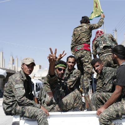 Medlemmar av den kurdiska YPG-milisen 23.6.2015 efter segern i staden Ayn Issa nära Raqqa.
