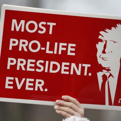 Kyltti, jossa sanotaan Trumpin puolustavan elämää edeltäjiään enemmän.