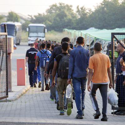 Pakolaisia kävelee aidan taakse leiriin poliisin saattamina.