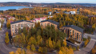 Puukuokka trähusområde i Kuopio