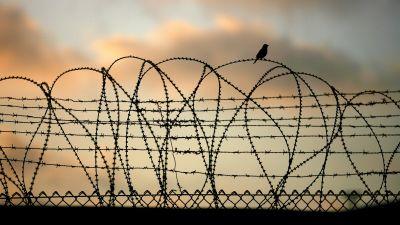 Taggtråd vid gränsen till Gaza.