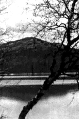 Finlands natur, Yle 1939