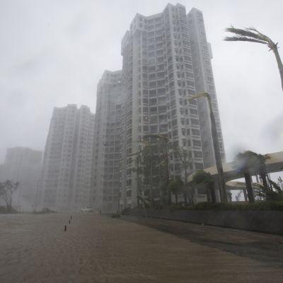 Tyfonen Mangkhut drar över Hongkong.