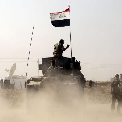 Shiamuslimska milisgrupper har inlett den väntade offensiven mot Tal Afar med stöd av arméns stridsvagnar och det irakiska flygvapnet.