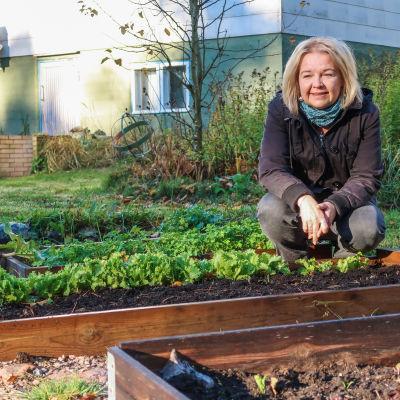 En kvinna sitter hukad vid ett grönsaksland.