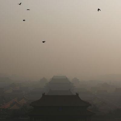 Utsläppsdimma över Peking den 19 december 2016.