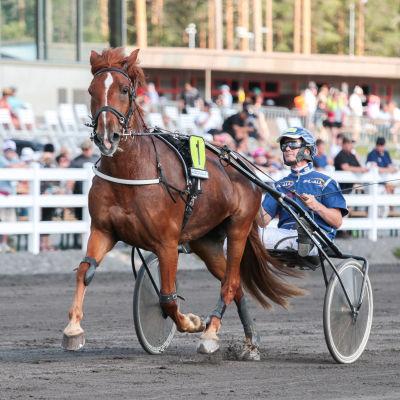 Tamma Ryti-Tyttö raittaillaan ohjastaja Juha Länsimäki.