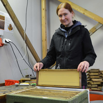 Carolina Mikander håller i en ram och ska placera ner den i en bikupa.