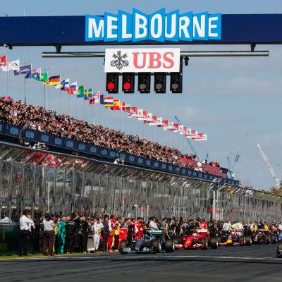 Inför starten på Australiens F1-GP i Melbourne 2015.