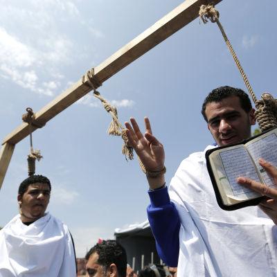 Egyptier bosatta i Turkiet demonstrerar mot massdödsdomarna.
