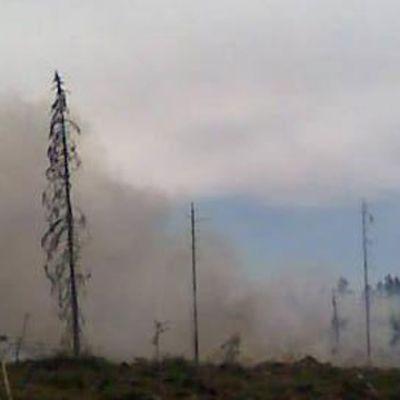 Skogsbrand i Kelviå